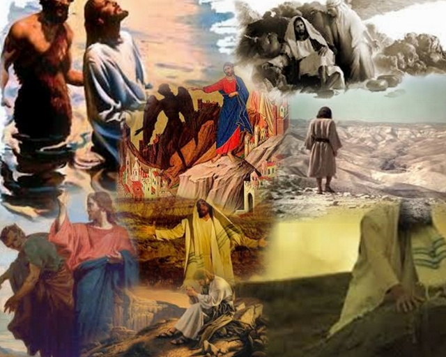 leadtothewilderness7 Collage (640x512)