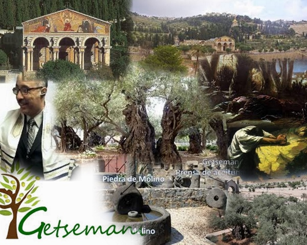 Gethsemane1 Collage (600x480)